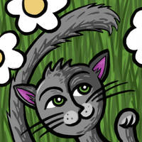 Grey playfull cat by Kalliope69