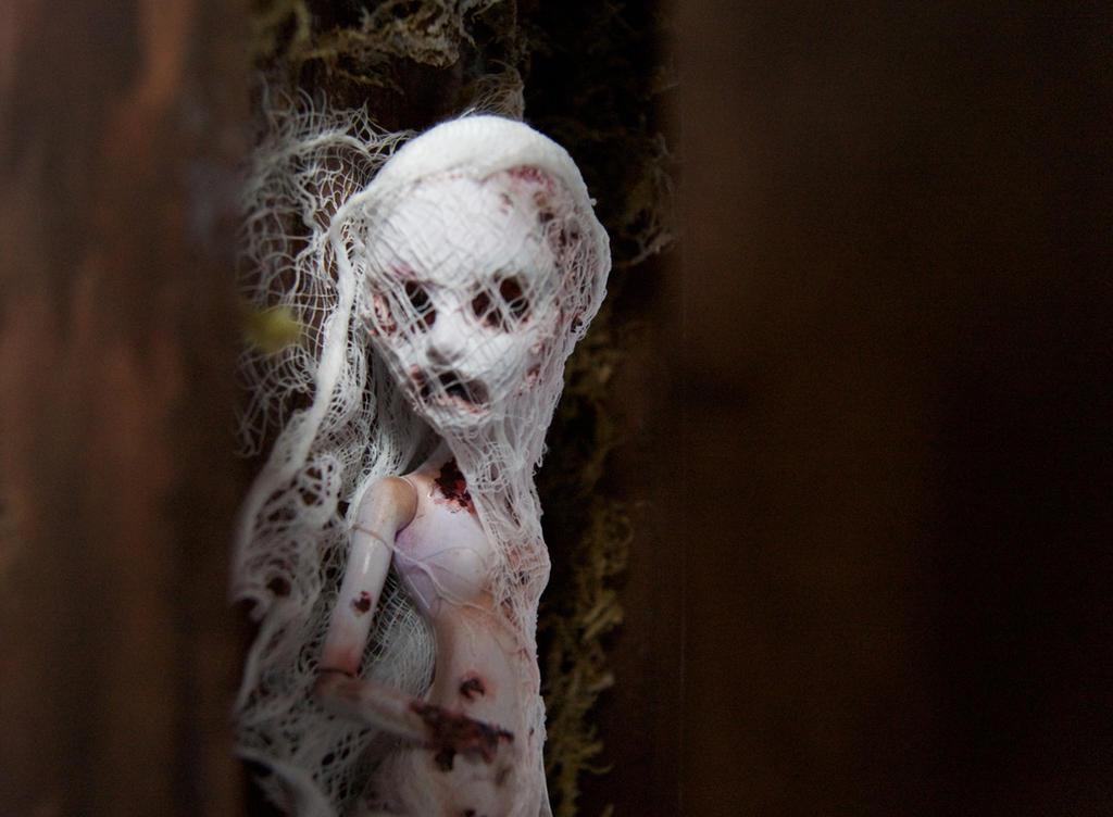 Monster High Modded Dolls (Zombie girl 8) by sankyaku