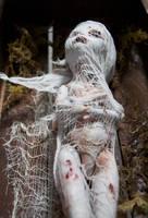Monster High Modded Dolls (Zombie girl 3) by sankyaku