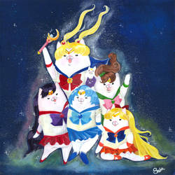 Sailor Cats, Inner Cats