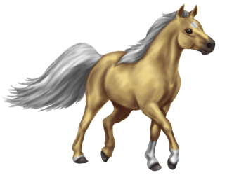 Quin: Miniature Horse Stallion by SilvanonOfTheOrchard