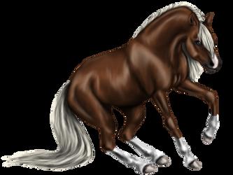 Quin: Quarter Horse Stallion by SilvanonOfTheOrchard