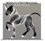 V119 Boucle Foal | Bataille