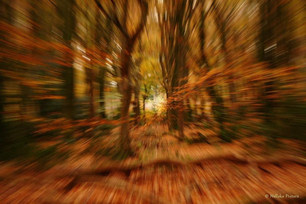 Run... by Nelleke