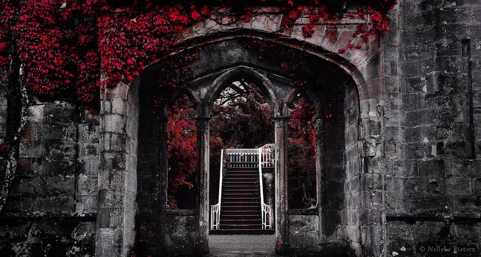 Ruin by Nelleke