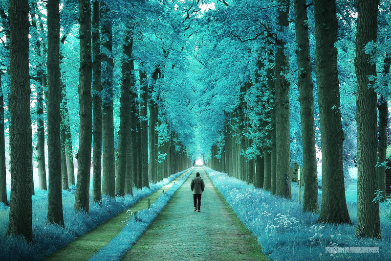 Brighter Days by Nelleke