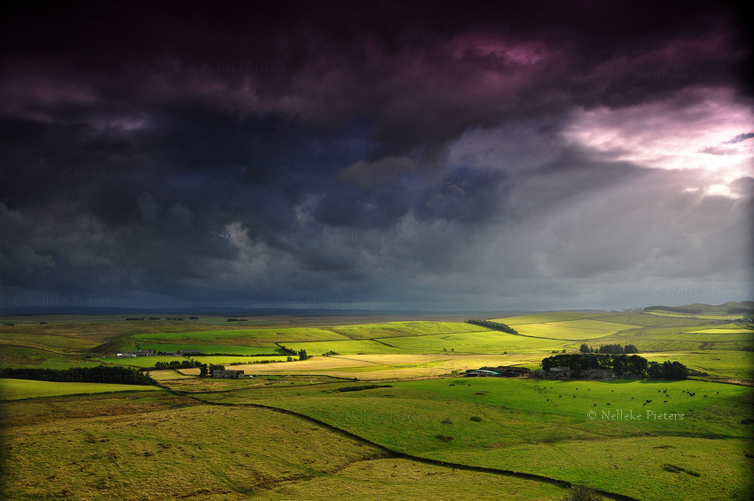 A Storm Is Coming by Nelleke