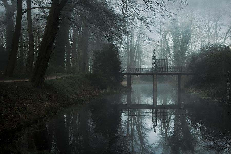 Tenth Mirror by Nelleke