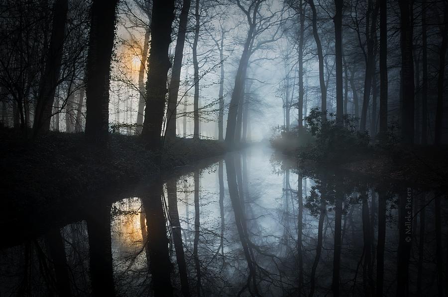 In Between by Nelleke