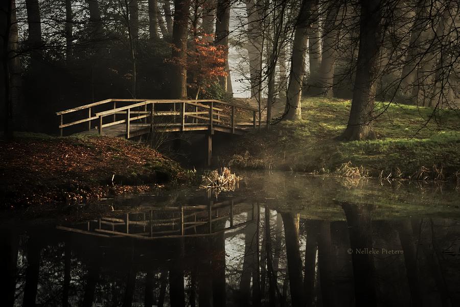 April Still by Nelleke