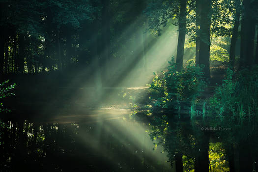 Lakeside Lullaby