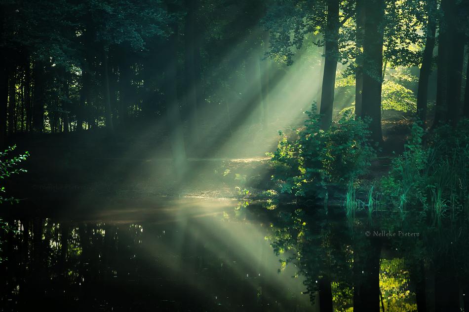 Lakeside Lullaby by Nelleke