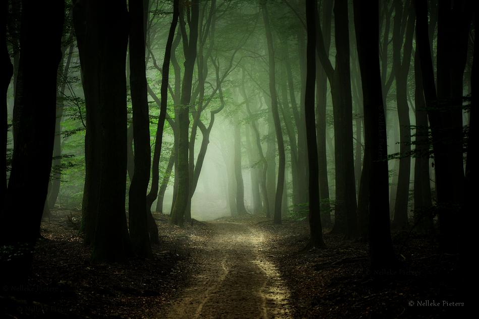 Around The Corner by Nelleke