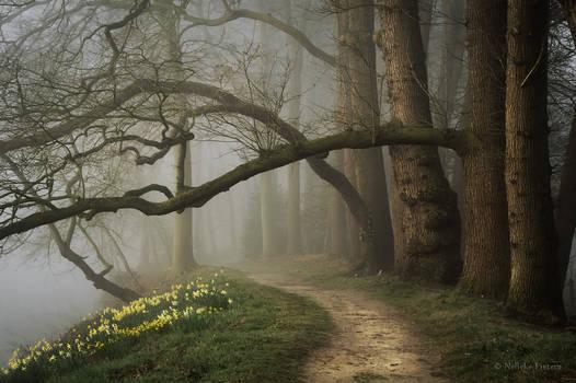 Enter Spring