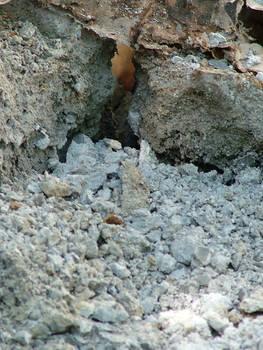 Loose Rocks