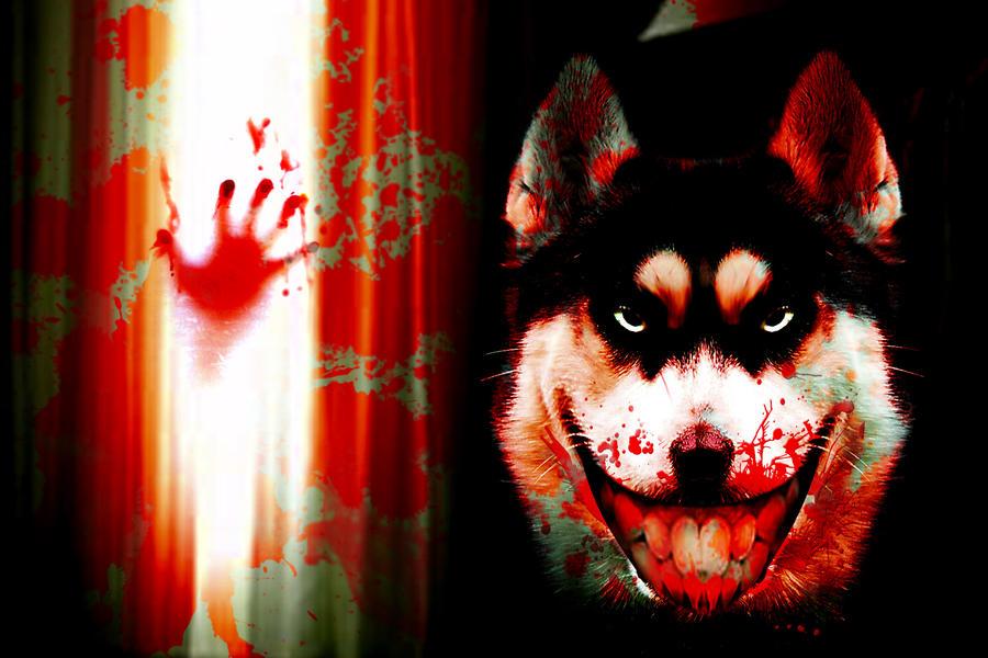 Smile.jpg - creepypast... Spread The Word Smile Dog