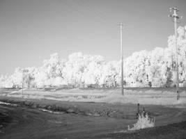 infrared::levee road by erikschorr