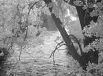 infrared::irrigation canal