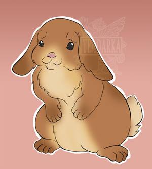 Bunny With Floppy Ears