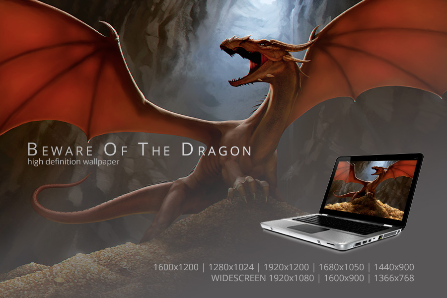 Beware Of The Dragon Wallpaper by PVproject