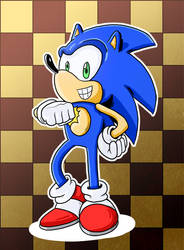 Sonic Checkerboard Glory