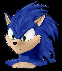 Sonic Experimental #1