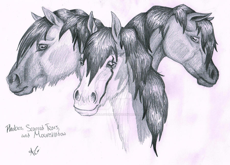 The 3 of Kin by animallover0629