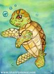 Amatae The Sea Turtle