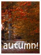 Autumn~ by gottahavepride