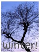 Winter~ by gottahavepride