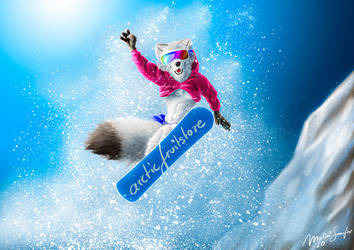 FLYING SNOW-board-POOF