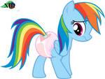 Rainbow's Re Adjustment