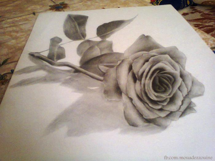 3D rose by moudi-art