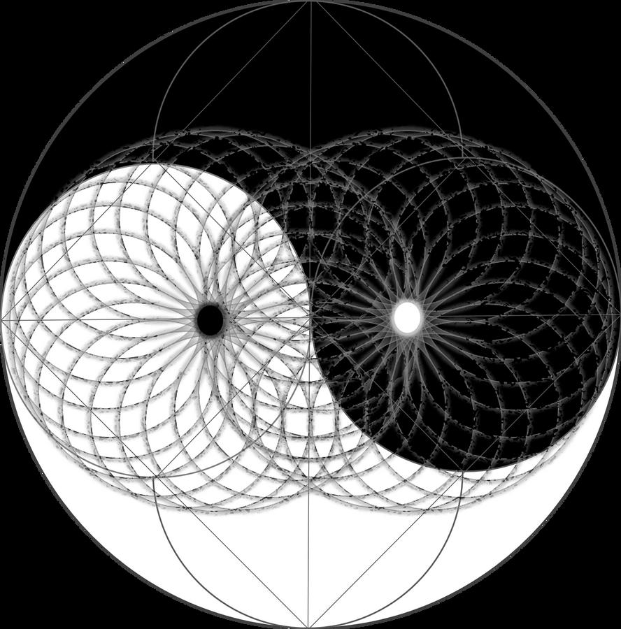 http://th03.deviantart.net/fs71/PRE/i/2014/002/c/3/yin_yang_mapped_onto_the_torus_by_omniscience1-d70hi59.png