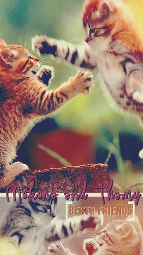 FELIZ CUMPLEAÑOS MOKONA. Cats_by_thamychan-d6ibqtt