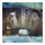 ID. pretend i'm free to roam. by gato-de-cheshire