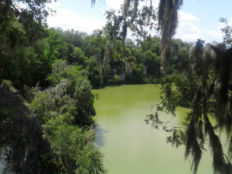 Ocala gorge-7 by agbuttery
