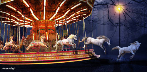 Freedom - The carousel
