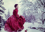 A Red Rose in the Snow