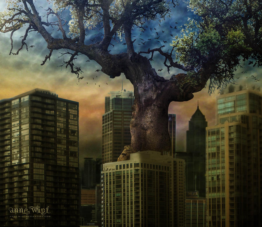 A tree in the City by annewipf