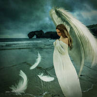The Angels are crying by annewipf