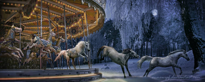 Freedom - The Carousel 2
