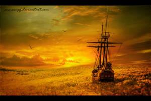 Sunflowers Sea