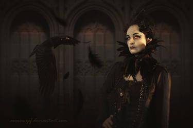 Raven by annewipf