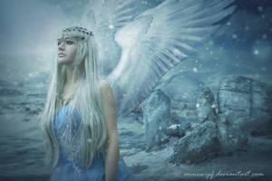 Winter by annewipf