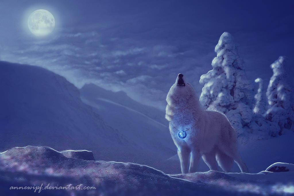 Winter Blues by annewipf