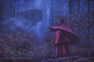 Little Red in the fog by annewipf