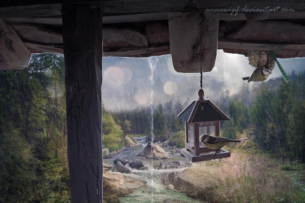 Songs of the Rain by annewipf