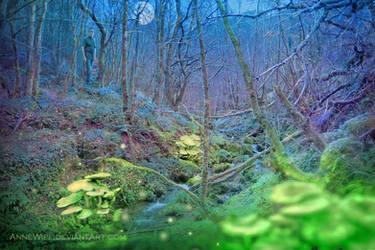 Fluorescence by annewipf