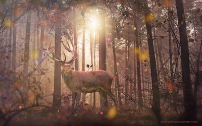 Autumn Splendor Wallpaper by annewipf